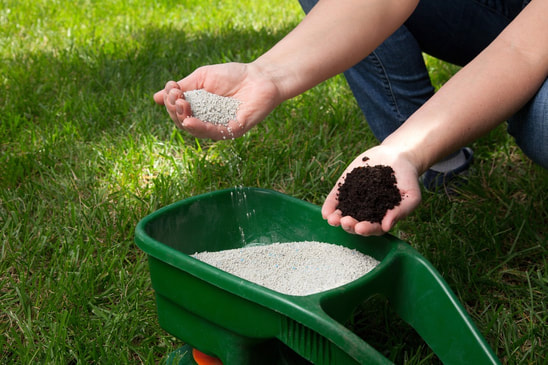 Best Lawn Care Secret When To Fertilize Your
